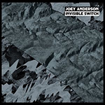Joey Anderson ‎– Invisible Switch