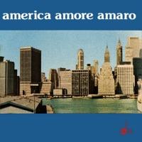 Remigio Ducros, Luciano Simoncini - America Amore Amaro 200x200